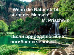 """""""Wenn die Natur stirbt, stirbt der Mensch!"""" M. Prischwin «Если природа погибн"""