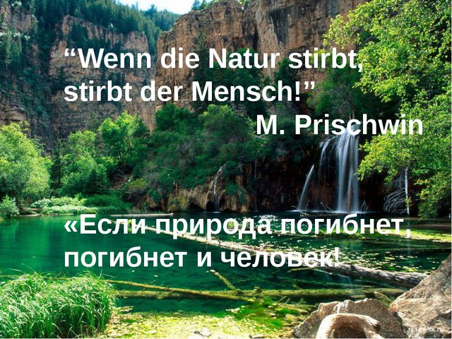 """""""Wenn die Natur stirbt, stirbt der Mensch!"""" M. Prischwin «Если природа погибн..."""
