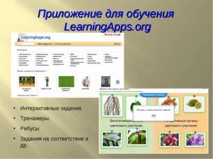 Интерактивные задания. Тренажеры. Ребусы Задания на соответствие и др. Прилож