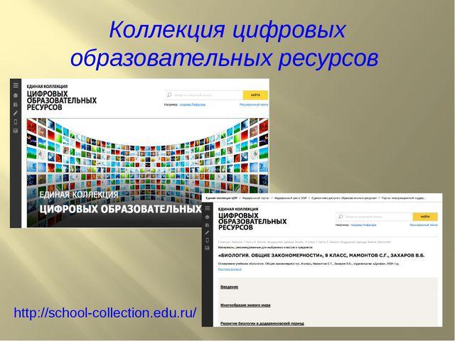 Коллекция цифровых образовательных ресурсов http://school-collection.edu.ru/