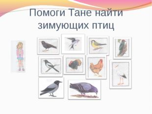 Помоги Тане найти зимующих птиц