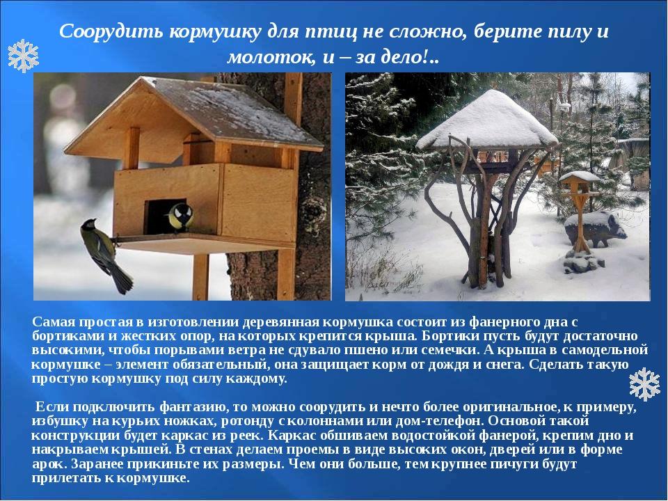 Соорудить кормушку для птиц не сложно, берите пилу и молоток, и – за дело!.....