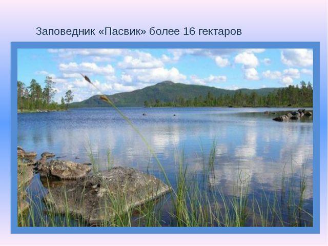 Заповедник «Пасвик» более 16 гектаров