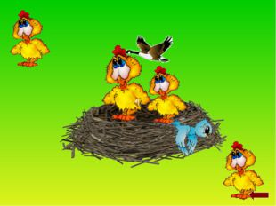 Весной птицы: Прилетают из тёплых стран. 2. Вьют гнёзда. 3. Откладывают я