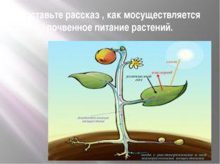 Составьте рассказ , как мосуществляется почвенное питание растений.