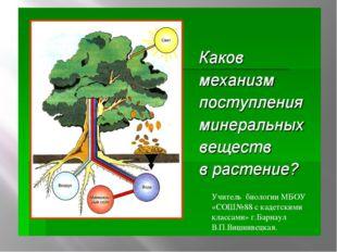 Учитель биологии МБОУ «СОШ№88 с кадетскими классами» г.Барнаул В.П.Вишнивецк