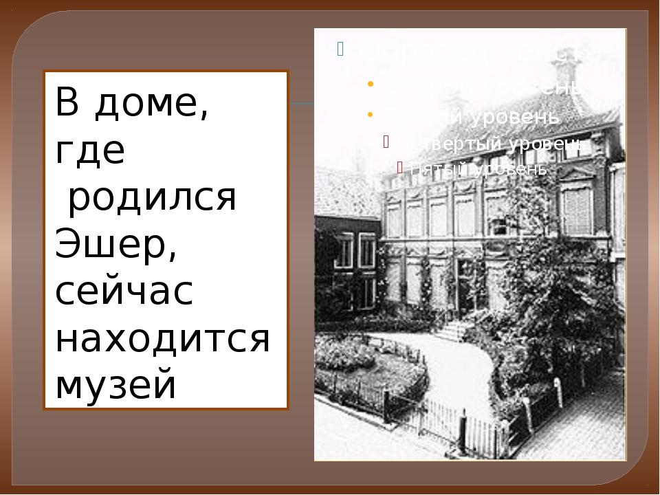 В доме, где родился Эшер, сейчас находится музей