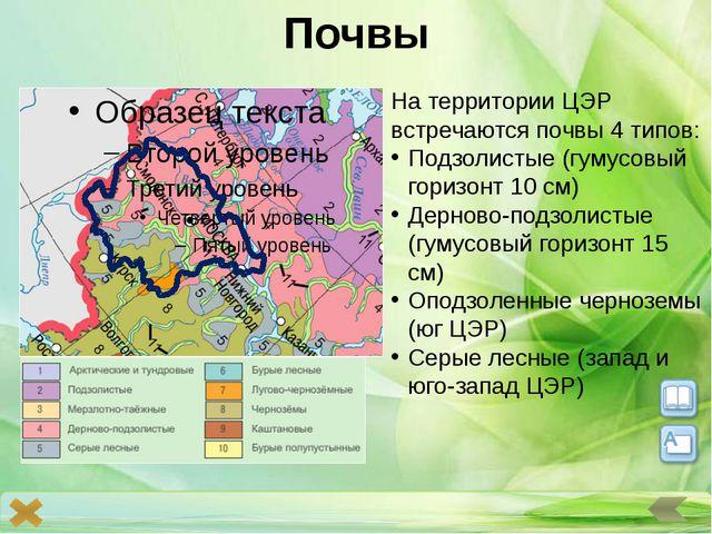 Проблемы Перспективы Конверсия производственного и научно-технического потенц...