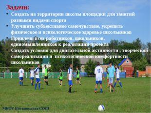 Задачи: Создать на территории школы площадки для занятий разными видами спорт