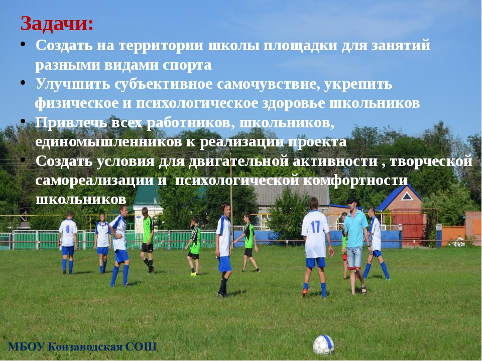 Задачи: Создать на территории школы площадки для занятий разными видами спорт...