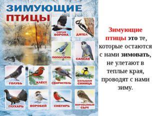 Зимующие птицыэтоте, которые остаются с намизимовать, не улетаютв теплые
