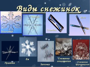 Виды снежинок Пластинки Звезда Столбик Игла Пушинка Ёж Запонка Снежинка оледе