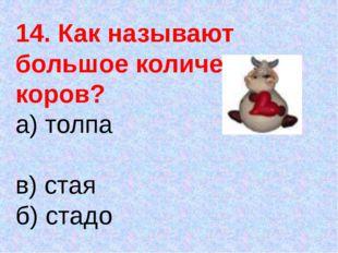14. Как называют большое количество коров? а) толпа в) стая б) стадо г) очередь