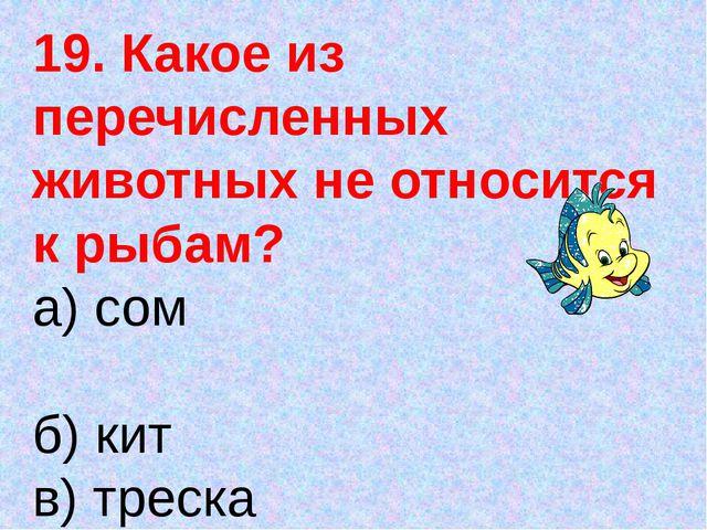 19. Какое из перечисленных животных не относится к рыбам? а) сом б) кит в) тр...