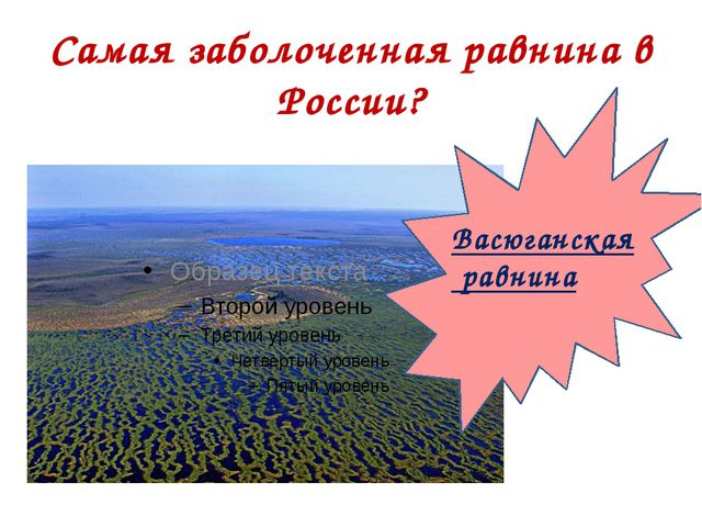 Самая заболоченная равнина в России? Васюганская равнина