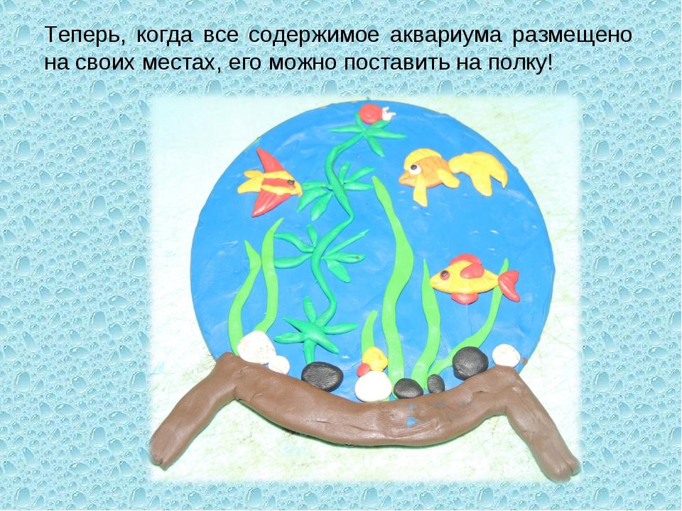 Теперь, когда все содержимое аквариума размещено на своих местах, его можно п...