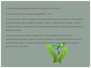 Сейчас большое внимание уделяется вопросам экологии. В своем комплексном знач