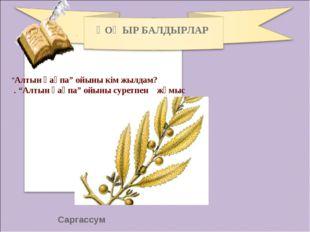 """Саргассум ҚОҢЫР БАЛДЫРЛАР """"Алтын қақпа"""" ойыны кім жылдам? . """"Алтын қақпа"""" ойы"""