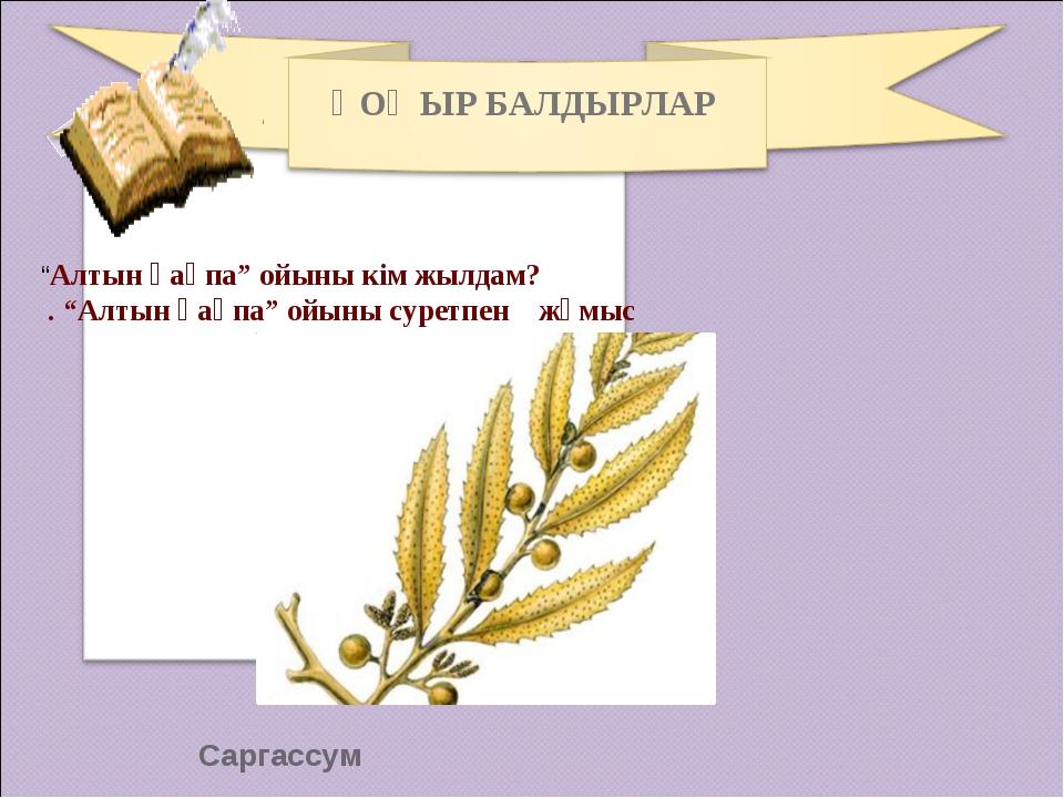 """Саргассум ҚОҢЫР БАЛДЫРЛАР """"Алтын қақпа"""" ойыны кім жылдам? . """"Алтын қақпа"""" ойы..."""