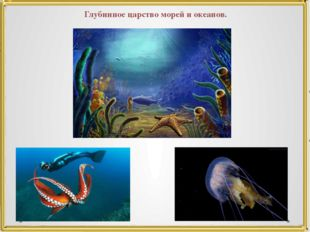 Глубинное царство морей и океанов.
