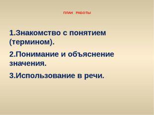 ПЛАН РАБОТЫ 1.Знакомство с понятием (термином). 2.Понимание и объяснение зна