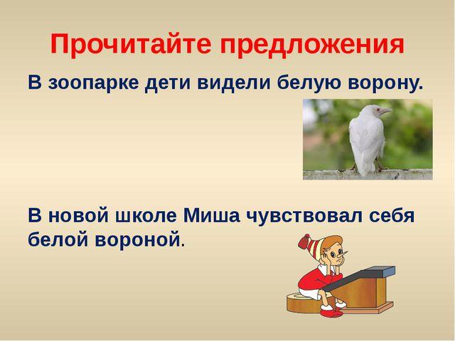Прочитайте предложения В зоопарке дети видели белую ворону. В новой школе Миш...