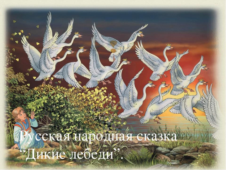 """Русская народная сказка """"Дикие лебеди"""". """