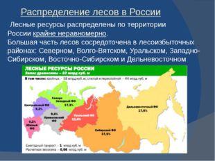 Распределение лесов в России Лесные ресурсы распределены по территории Росси