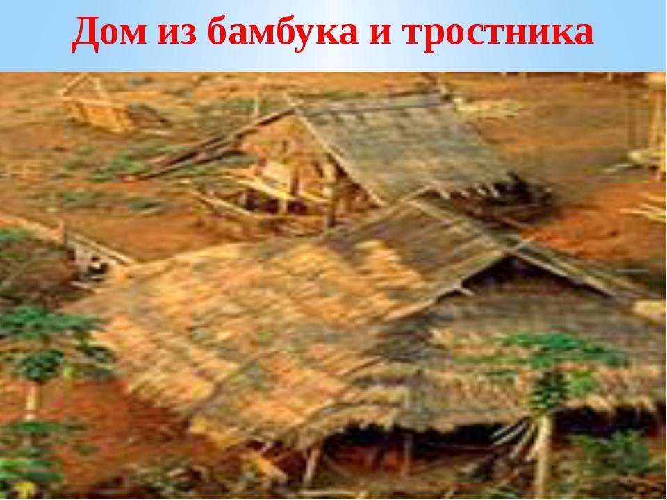 Дом из бамбука и тростника