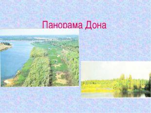 Панорама Дона