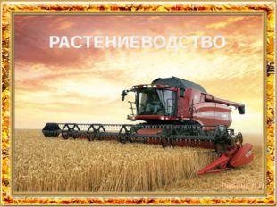 РАСТЕНИЕВОДСТВО Рябова Л.Н.