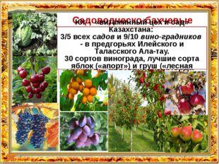Title in here Title in here Садоводческо-бахчевые культуры Центральный и Сев