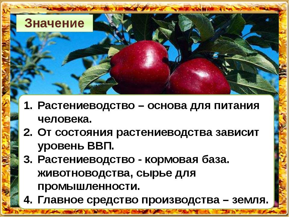 Растениеводство – основа для питания человека. От состояния растениеводства з...