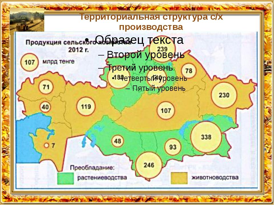 Территориальная структура с/х производства