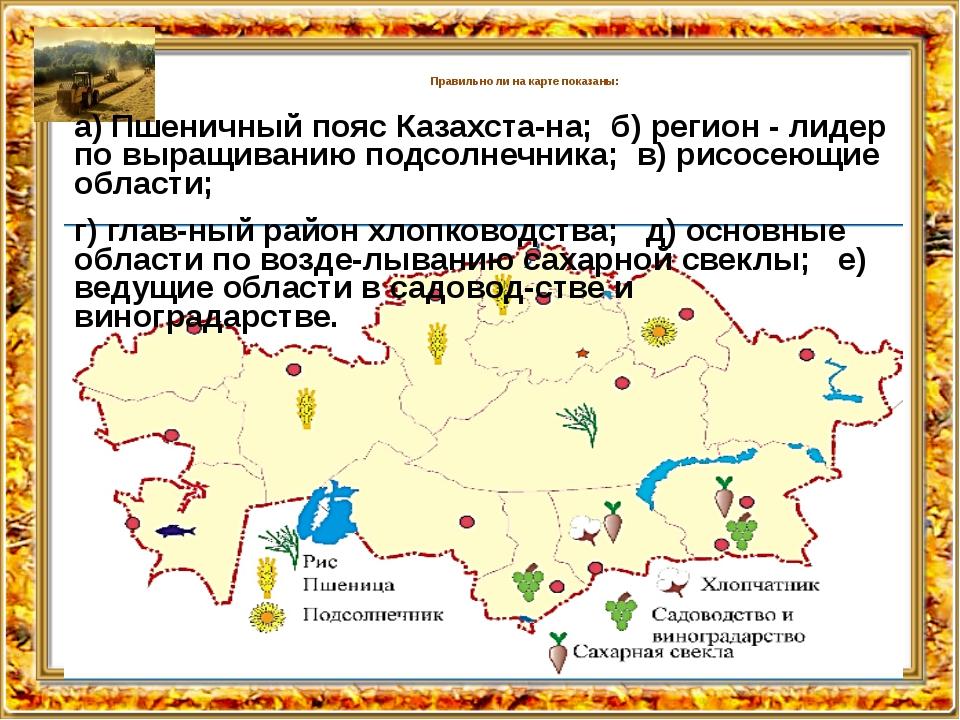 Правильно ли на карте показаны: а) Пшеничный пояс Казахстана; б) регион - л...