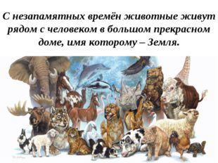 С незапамятных времён животные живут рядом с человеком в большом прекрасном д