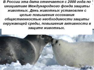 В России эта дата отмечается с 2000 года по инициативе Международного фонда з