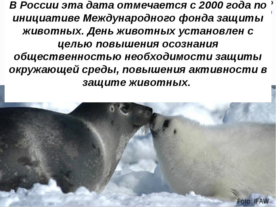 В России эта дата отмечается с 2000 года по инициативе Международного фонда з...