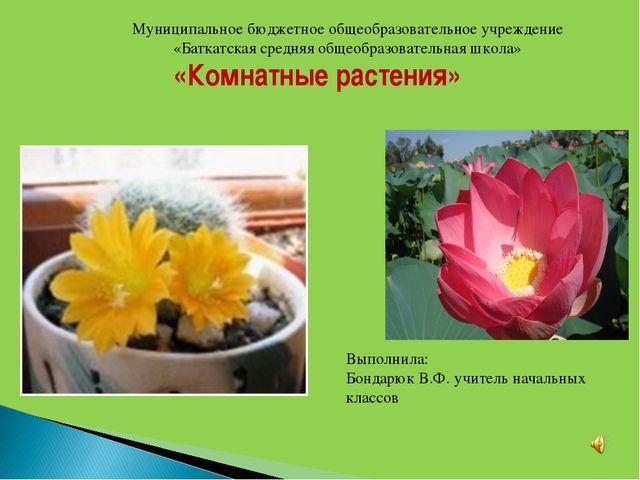 «Комнатные растения» Муниципальное бюджетное общеобразовательное учреждение...
