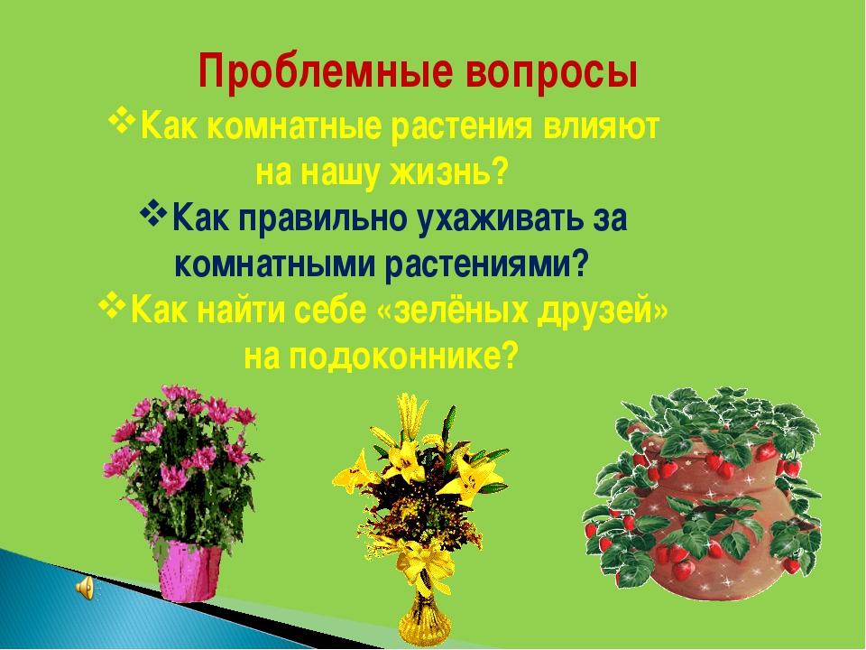 Проблемные вопросы Как комнатные растения влияют на нашу жизнь? Как правильно...