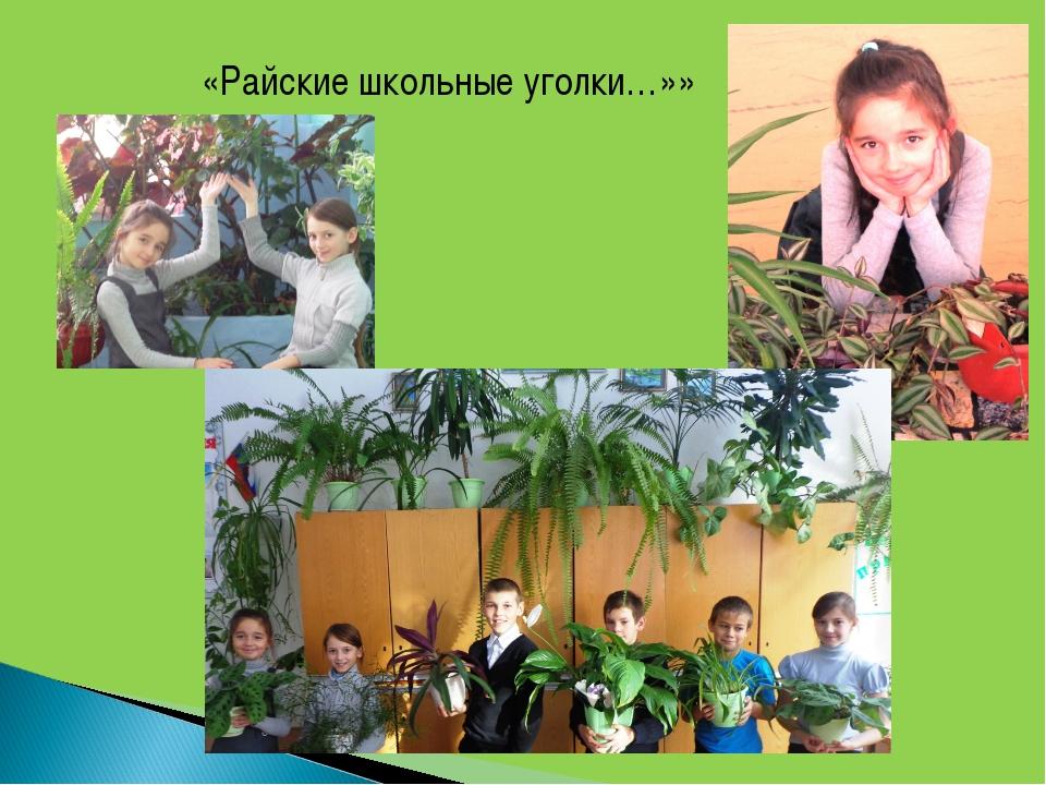 «Райские школьные уголки…»»