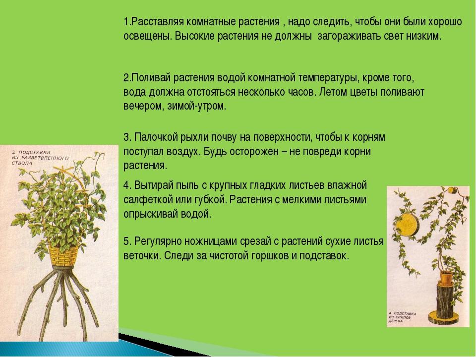 1.Расставляя комнатные растения , надо следить, чтобы они были хорошо освещен...