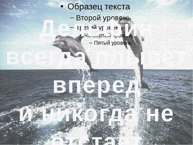 Дельфин всегда плывет вперед и никогда не отстает