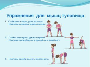 Упражнения для мышц туловища Стойка ноги врозь, руки на поясе. Наклоны тулови