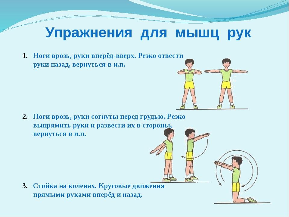 выбор упражнения для рук с картинками и описанием даже мастера