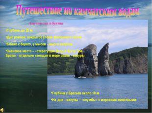 Авачинская бухта Глубина до 25 м Дно ровное, покрытое слоем заиленного песка.