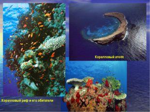 Коралловый атолл Коралловый риф и его обитатели