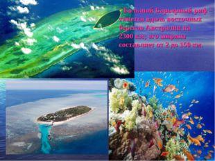 Большой Барьерный риф – тянется вдоль восточных берегов Австралии на 2300км;