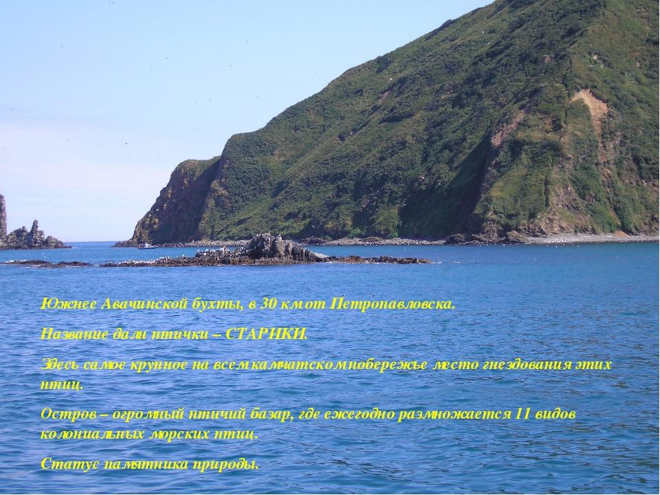 Южнее Авачинской бухты, в 30 км от Петропавловска. Название дали птички – СТА...