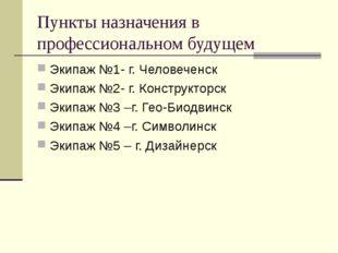 Пункты назначения в профессиональном будущем Экипаж №1- г. Человеченск Экипаж